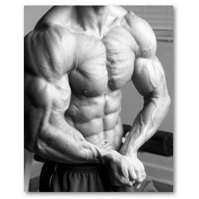 muscular-male