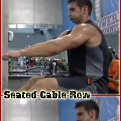 best-back-exercises