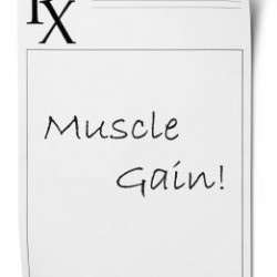 Prescription for Muscle Gain