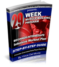 Beginner Intermediate 29 Week Intensive Workout Program