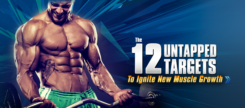 Get the 12 untapped target to ignite new muscle growth