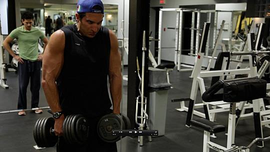 shoulder-shrugs