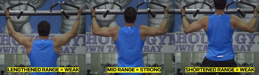 shortened, mid range, lengthened range